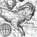 Le signe astrologique capricorne est aussi un animal legendaire 19b2f197d58421d48b1a471d2ca2959b67c05e41