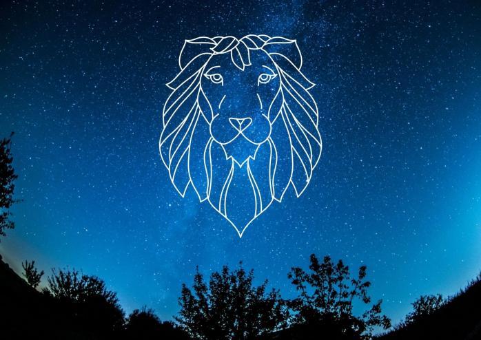 Lion 1 1