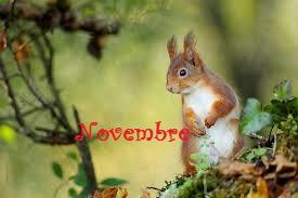 Novembre 1