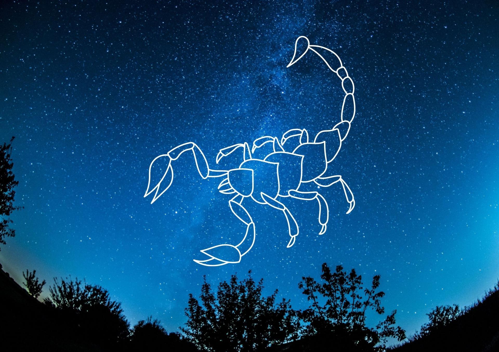 Scorpion 1 1